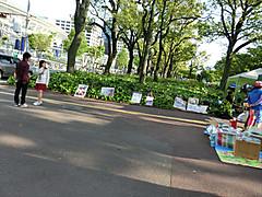 Cimg5994_r