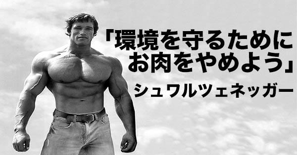 Schwarzeneggernikuyameyokiji