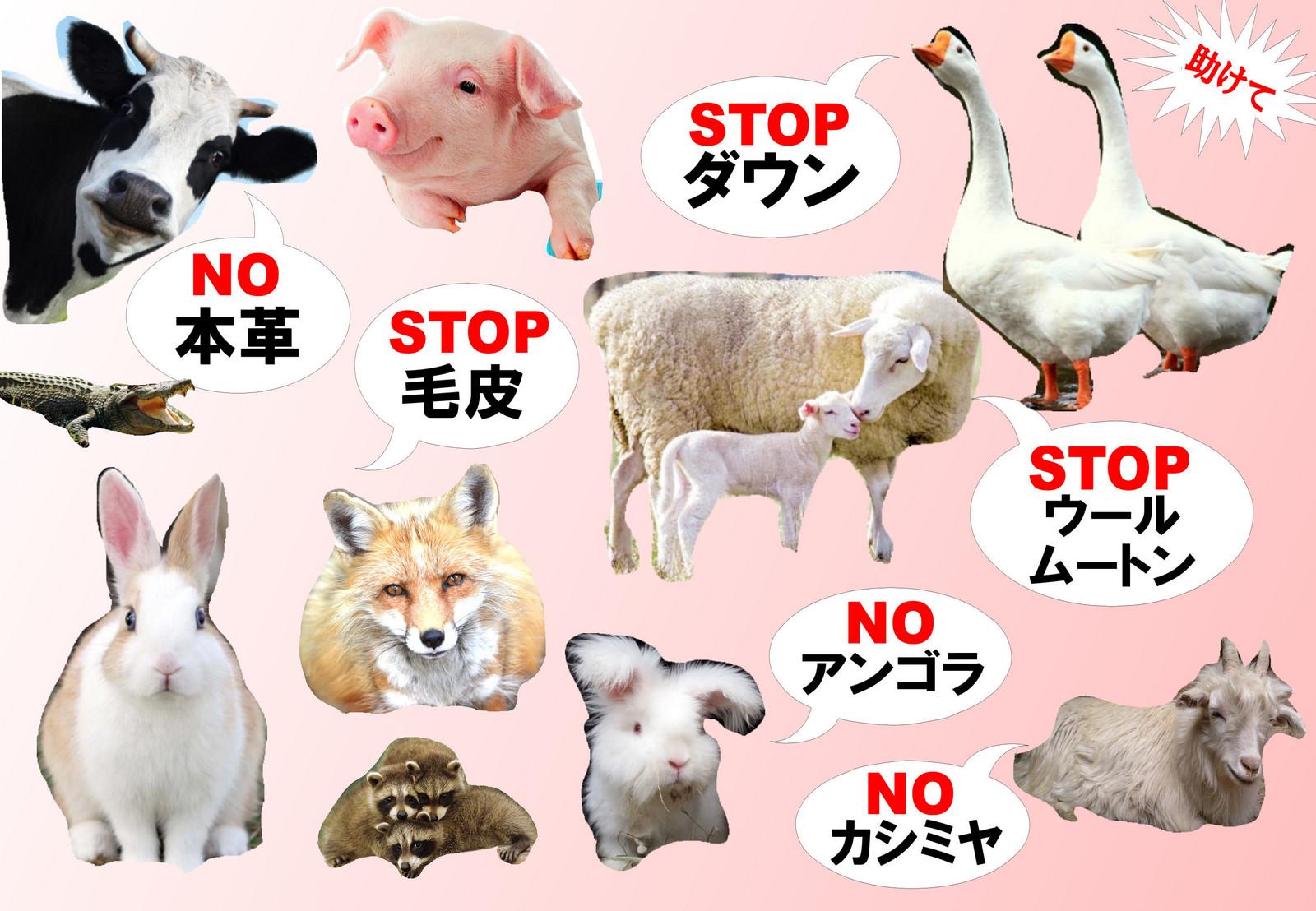 Animalfreebase2